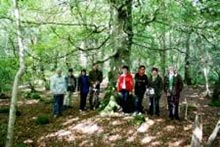 Rathmullen NR group walk