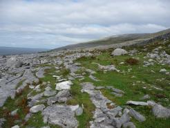Limestone Pavement - Black Head 2