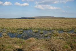 Slieve Bloon NR - plateau and bog pool