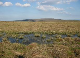Slieve Bloom NR - plateau and bog pool