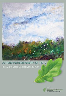 Ireland biodiversity strategy