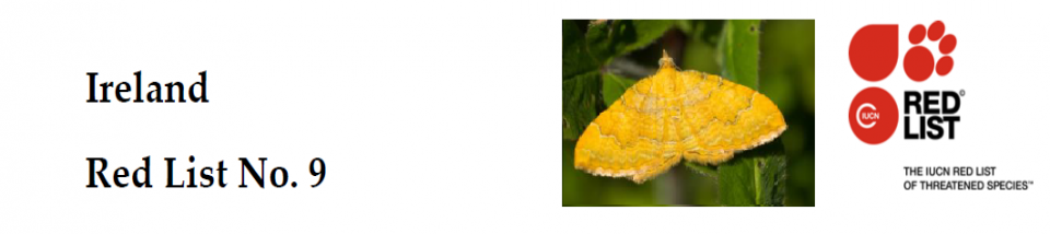 Ireland Red List No. 9: Macro-moths (Lepidoptera)