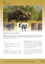 CITES Elephants poster thumbnail image