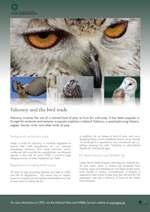 CITES Falconry poster thumbnail image
