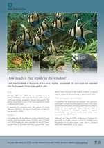 CITES Pet Trade poster thumbnail image