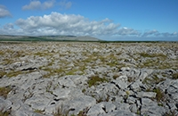 Image of limestone pavement landscape
