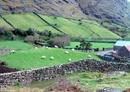 Photo of farmland